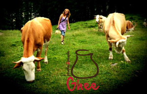 hrvatski-ghee